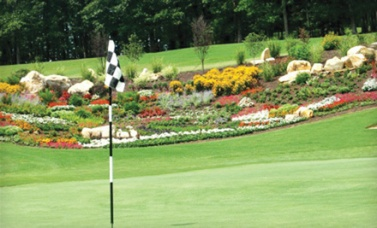 Cleghorn Plantation has not only improved the greens and fairways, but has also changed the overall look of the course with additional plantings and flowers.